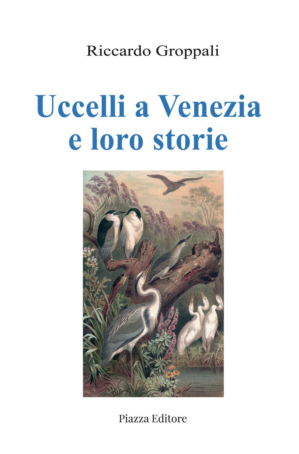 Uccelli a Venezia e loro storie